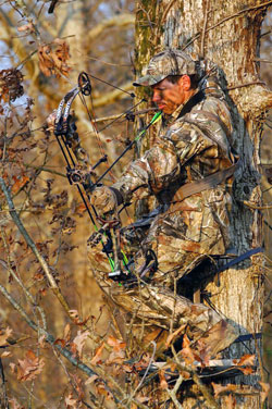 bowhunter-in-tree.jpg